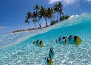indonesie eau plongée